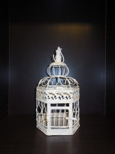 Bird Cage - Small